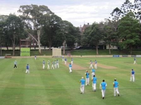 cricket shot- low res website