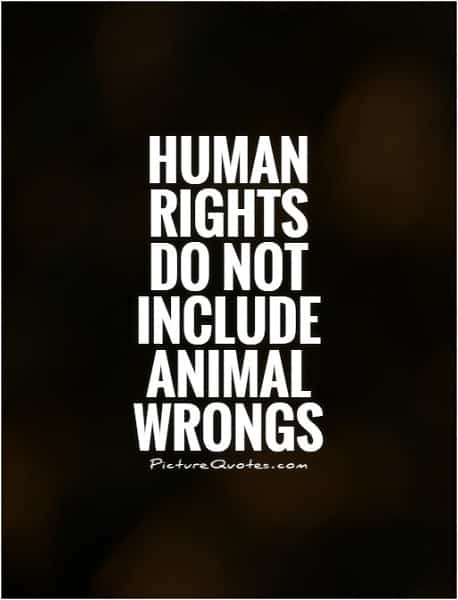 animal rights.Indian Link