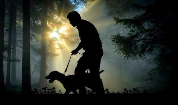 Dog1. Indian link